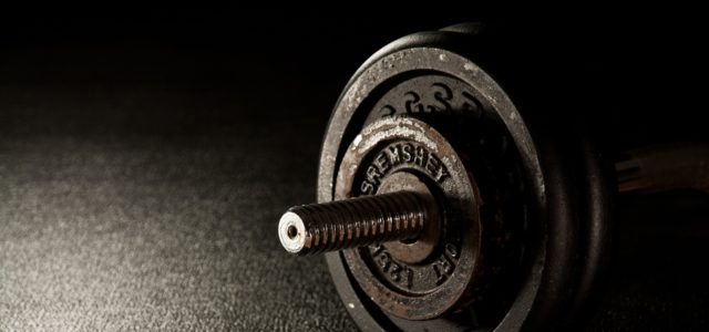 Digitization in The Fitness Industry
