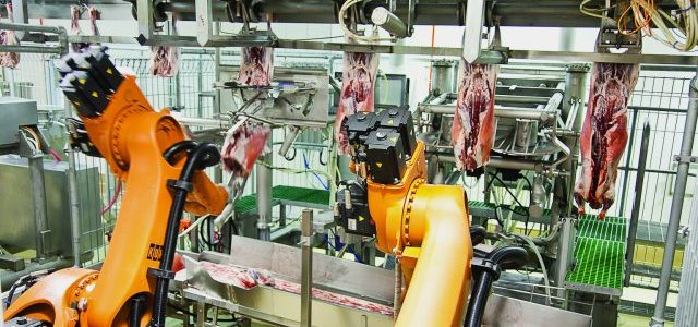Featured Image for RISE OF THE ROBOT BUTCHERS: Inside the transformation of Australia's meat industry and the threat to human jobs