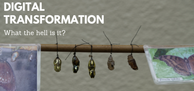Featured Image for What is Digital Transformation?