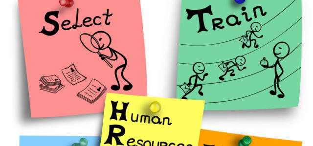 Featured Image for 15 Key Human Resources Roles – Digital HR Tech blog