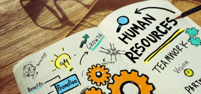Featured Image for The 12 Key Functions of Human Resources – Digital HR Tech blog