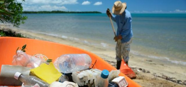 Featured Image for A simple online system that could end plastic pollution