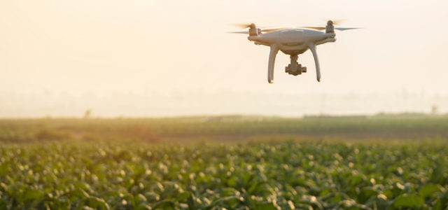 Featured Image for The fourth industrial revolution in agriculture