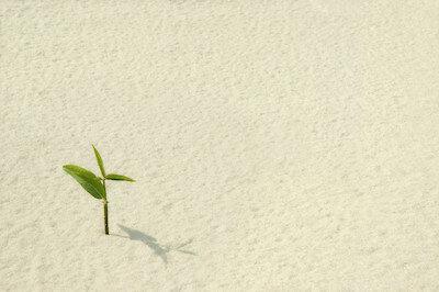 Karen Ferris - 13 Reasons Why - #9 Optimism